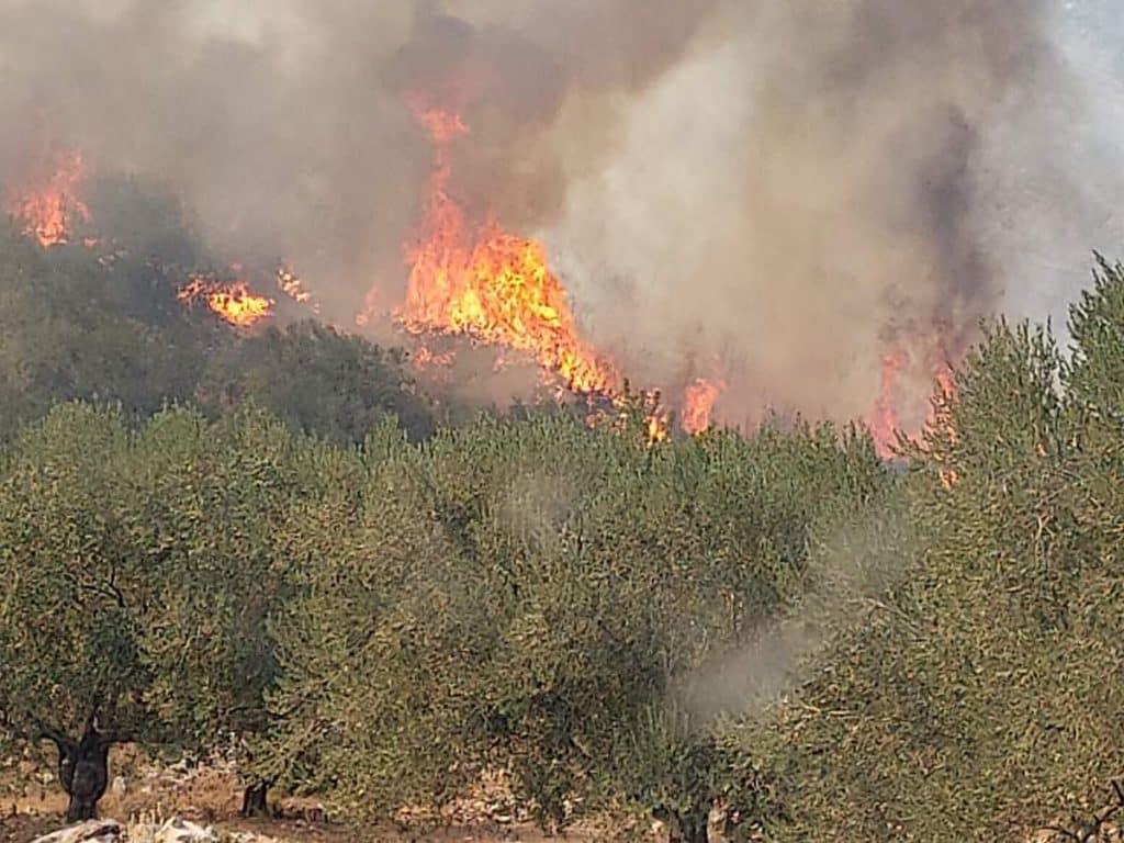 Μάχη με τις φλόγες στο Αραχναίο Αργολίδας και στη Νέα Αλμυρή Κορινθίας