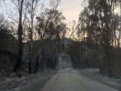 Συνεχίζεται η μάχη με τις φλόγες σε Λακωνία και Μεσσηνία